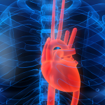 Ways to Lower Your Risk of a Heart Attack